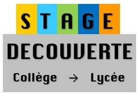 PASTILLE STAGE DE DECOUVERTE COLLEGE LYCEE